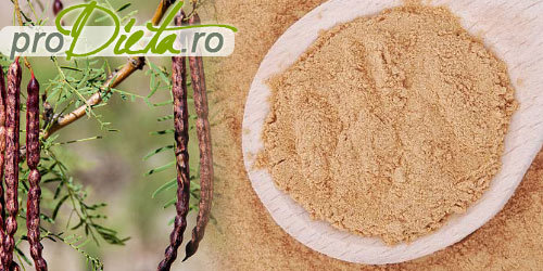 Mesquite pudra: pret, beneficii, proprietati nutritive